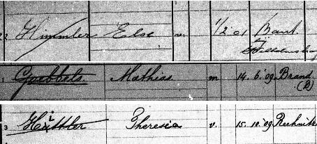 Fragmenten van Haagse gezinskaarten: Else Himmler, Mathias Goebbels, Theresia Hittler