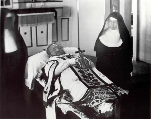 Pater Damiaan (1840-1889), Vlaams missionaris en heilige