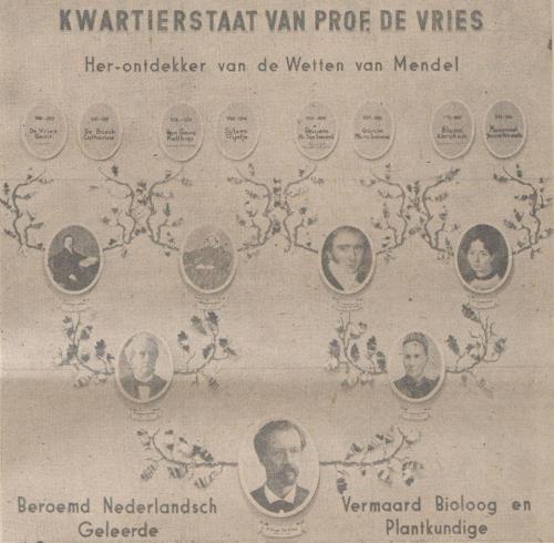 Kwartierstaat Hugo de Vries