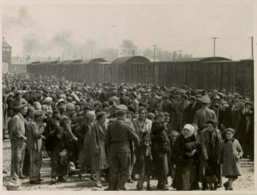Selectie van gevangenen in Auschwiz (Yad Vashem)
