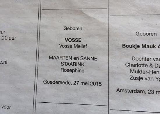 NRC Handelsblad, 30 mei 2015 (met dank aan Anne)